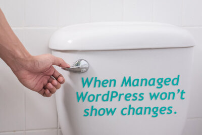 When Managed WordPress won't show changes text on a toilet