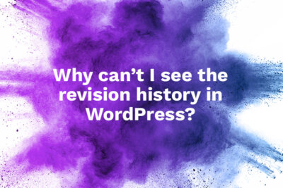 Can't see revision history in WordPress